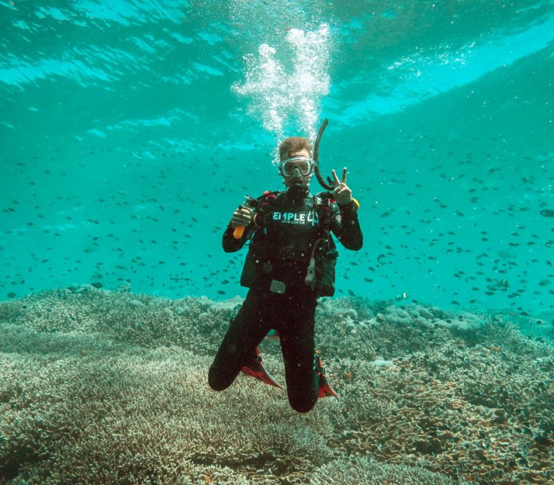 DSD Temple diving